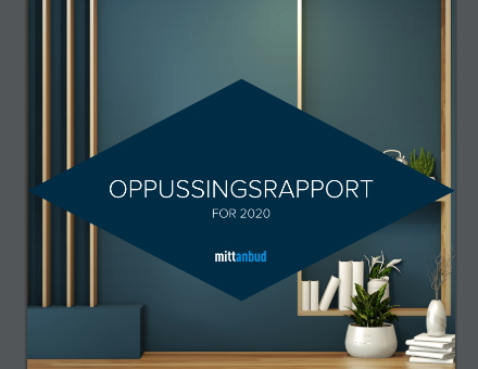 Oppussingsrapport 2020